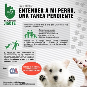 convocatoria animales