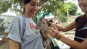 Algunos vecinos fueron con sus gatos, sobre todo a informarse sobre vacunas y métodos de desparasitación.