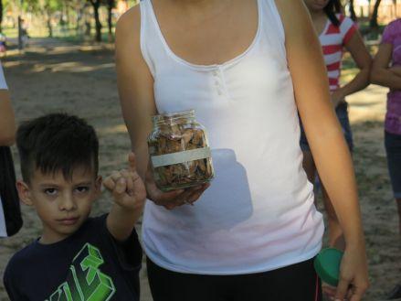 RioSierra - semillas 7