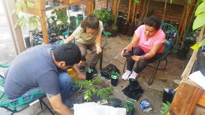 Brahim, Marcela y Alejandra, con los plantines del vivero.