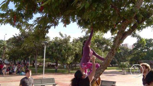 Pejerrey-ColectaSemillas-080417-5