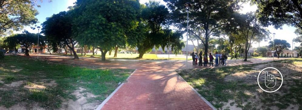 Una hermosa forma de pasar la tarde del sábado a la sombra de los árboles que estamos aprendiendo a conocer y valorar.